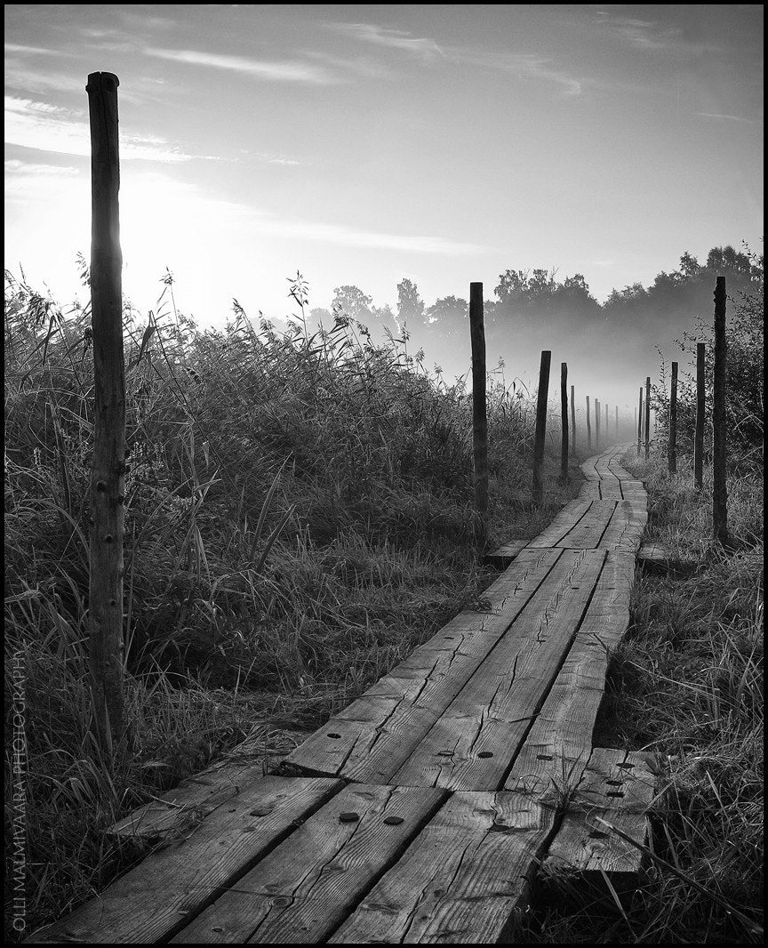 Photograph Wooden Path on a misty morning by Olli Malmivaara on 500px