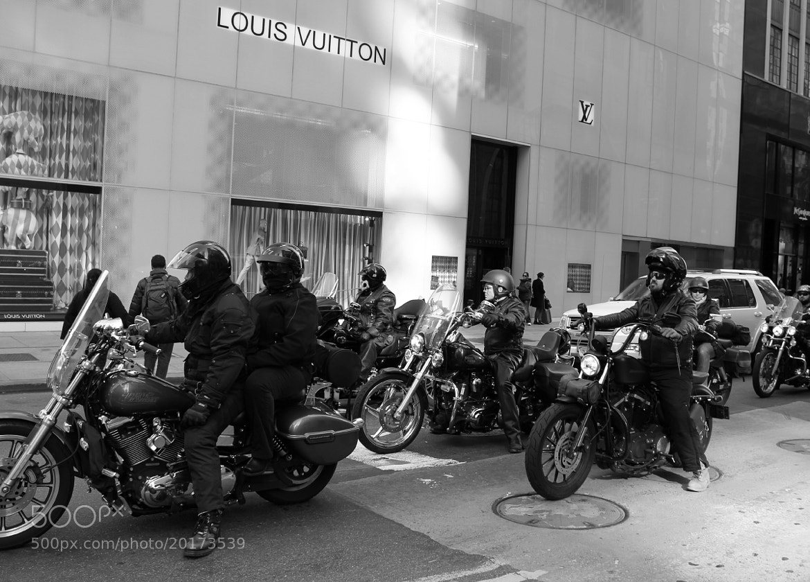 Photograph Louis Vuitton & Motorcycles by Poppy Rose on 500px