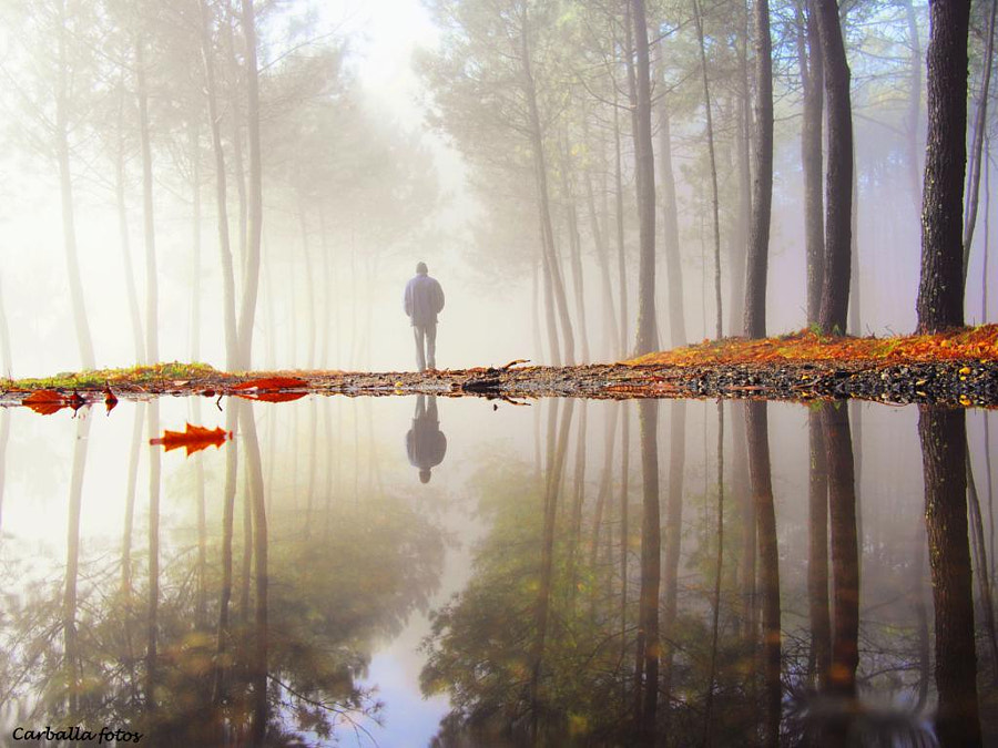 Through the Looking Glass by Guillermo  Carballa on 500px.com