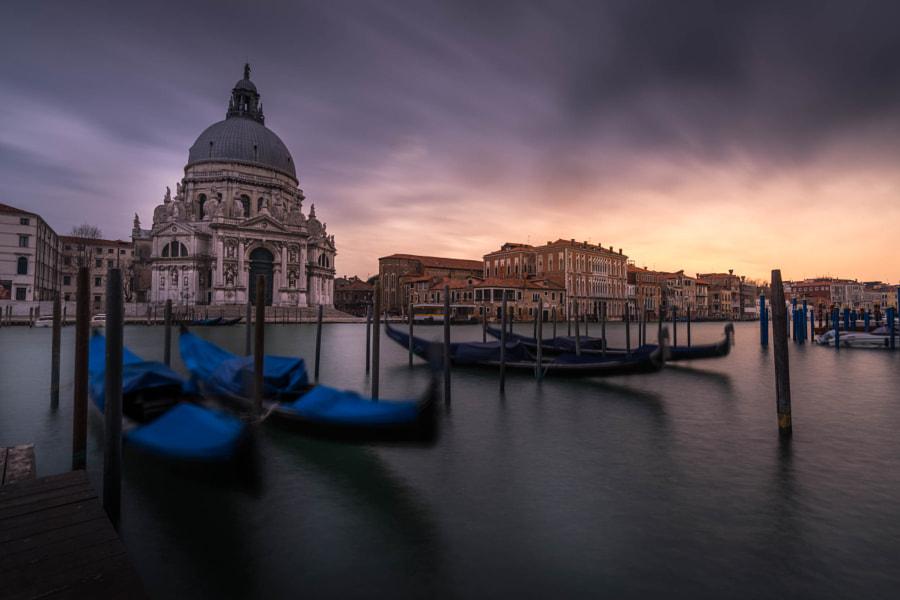 Venise gondolas