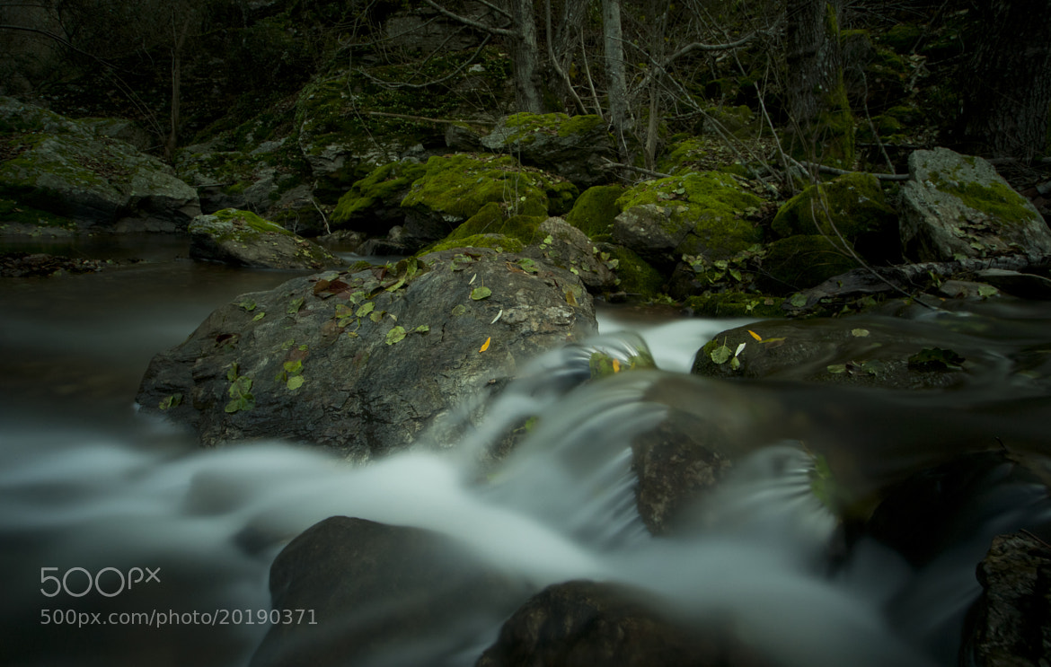Photograph Zacarias brook. by joaocarlo   on 500px