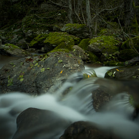 Zacarias brook. by joaocarlo . (joaocarlo)) on 500px.com