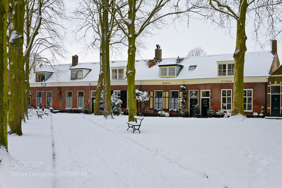 Photograph Wintertime by Deen Guldemond on 500px