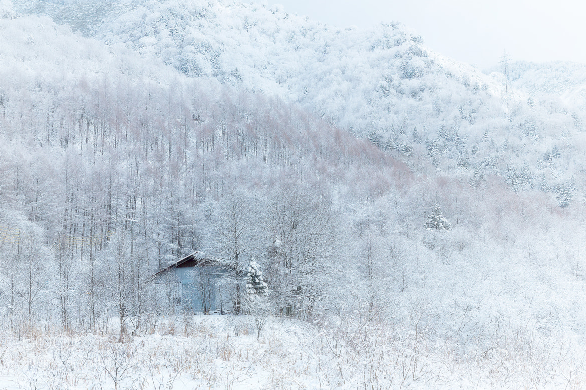 Photograph Snowy country by MIYAMOTO Y on 500px