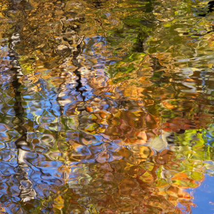 Fall reflection (2014), Pentax K-5 II, smc PENTAX-FA Macro 100mm F2.8