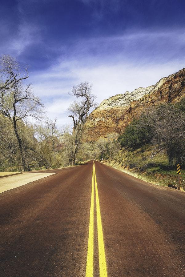 Zion National Park XVI