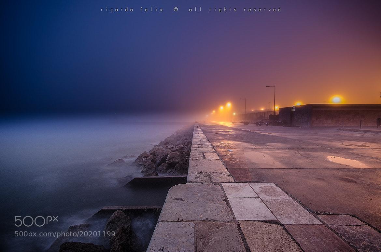 Photograph A foggy morning #3 by Ricardo Bahuto Felix on 500px