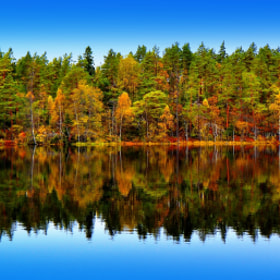 Autumn Along The Water Edge by Lillian Molstad Andresen (andresen1)) on 500px.com