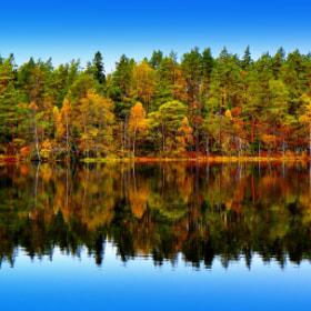 Autumn Along The Water Edge by Lillian Molstad Andresen (andresen1)) on 500px.com