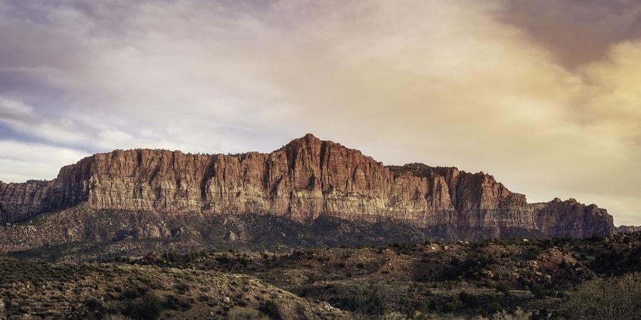 Zion National Park XVII