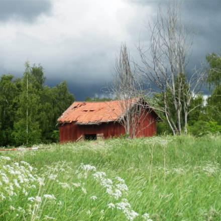 Shed in Sweden