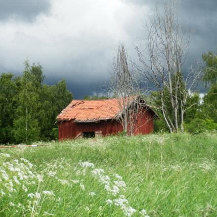 Shed in Sweden