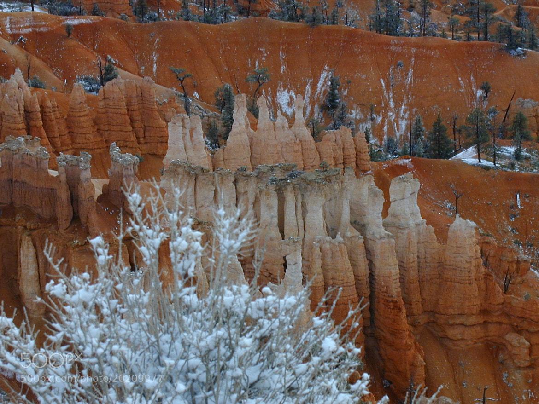 Photograph Brice Canyon - USA by Philippe Kerignard on 500px