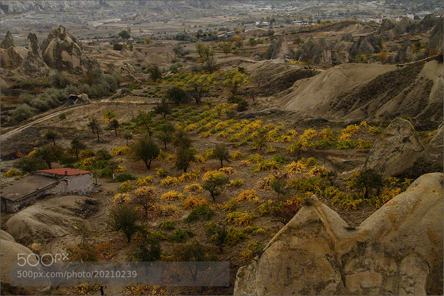Photograph Cappadocian Vineyard by Andrew Barrow LRPS on 500px