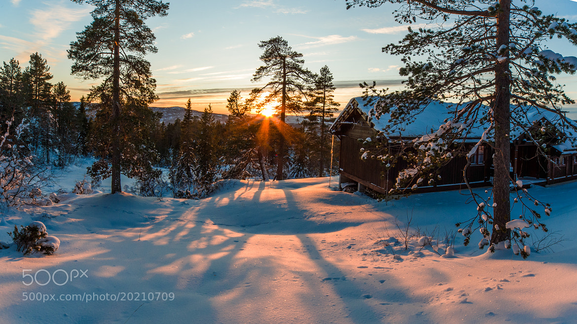 Photograph Cabin in Sunset by Odd Smedsrud on 500px