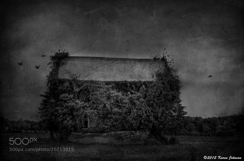 Photograph Assateague Abandoned House by Karen Johnson on 500px