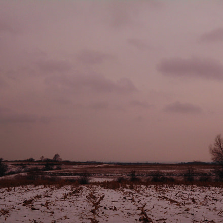 Winter farmland in Iowa, Nikon COOLPIX L32