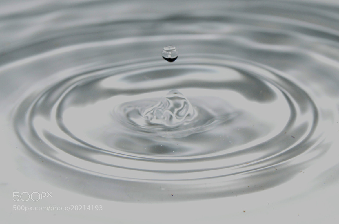 Photograph Drop, water and flash. by Sergio Nuñez on 500px