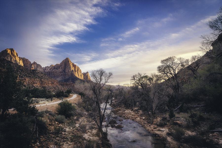 Zion National Park XIX