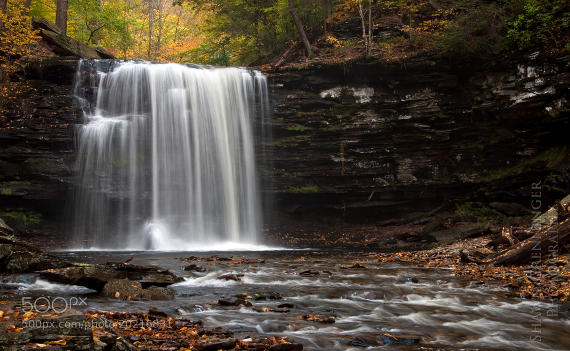 Photograph Harrison Wright Falls by Shawn Grenninger on 500px