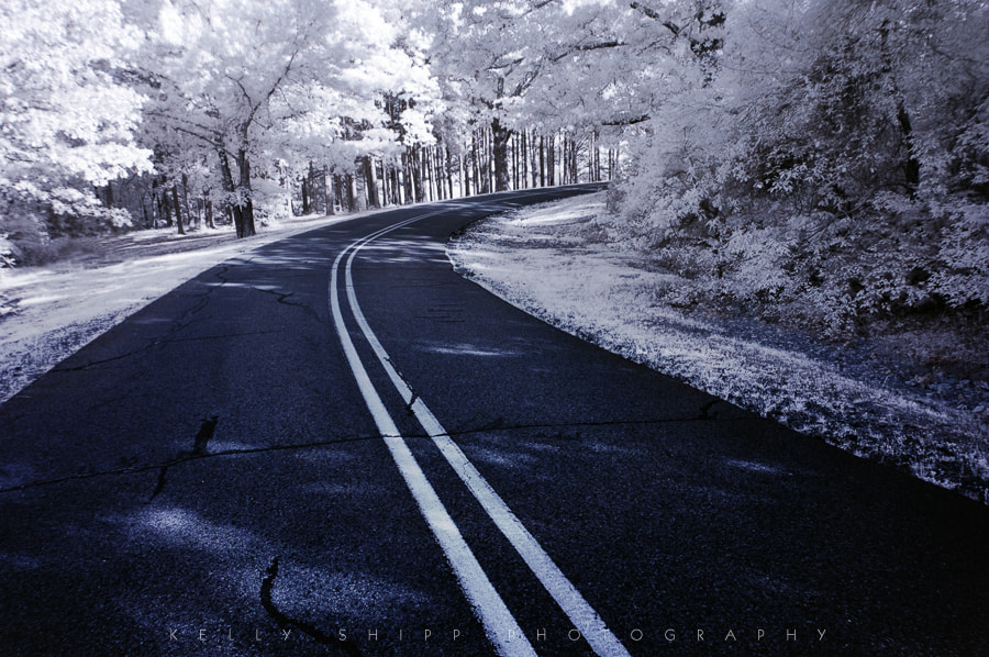 """Photograph """"A Bend in the Road"""" by Kelly Shipp on 500px"""