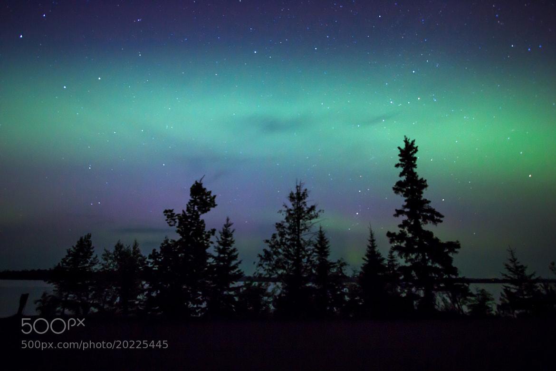 Photograph Aurora serenity by Steve Burns on 500px