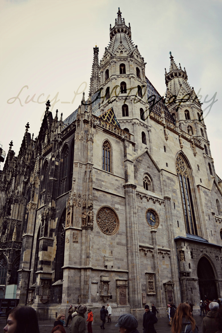 Photograph cathedral St. Stephen by Lucy_PHOTO on 500px