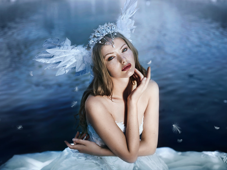 A swan's song... by Bella Kotak on 500px.com