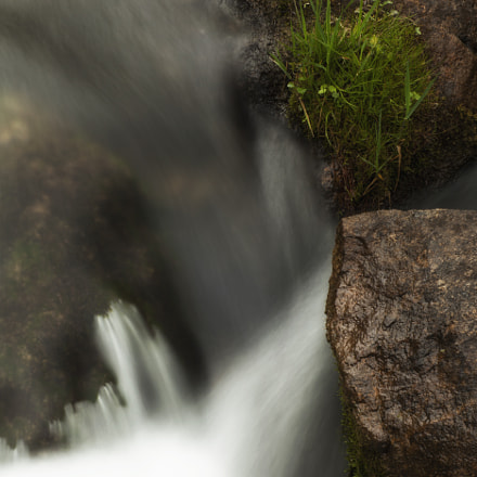 Water Flowing Through the, Canon EOS 5D MARK II
