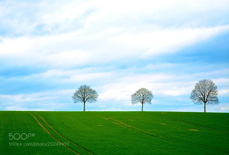 Photograph Hannover by Ömer Bayram on 500px