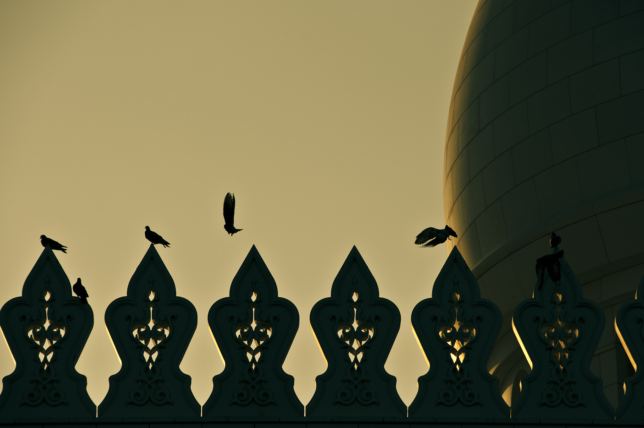 Photograph Pece on the Mosque by O Al Zubaidi on 500px