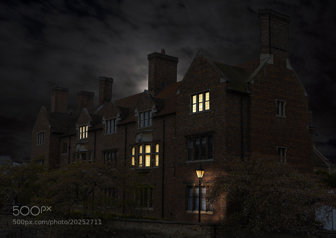 Photograph The mansion by David Asch on 500px
