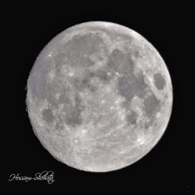 Moon by Hossam Eldin Shehata (hossamhero13)) on 500px.com