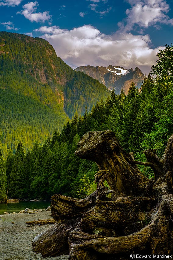 Photograph Into the Wild by Edward Marcinek on 500px