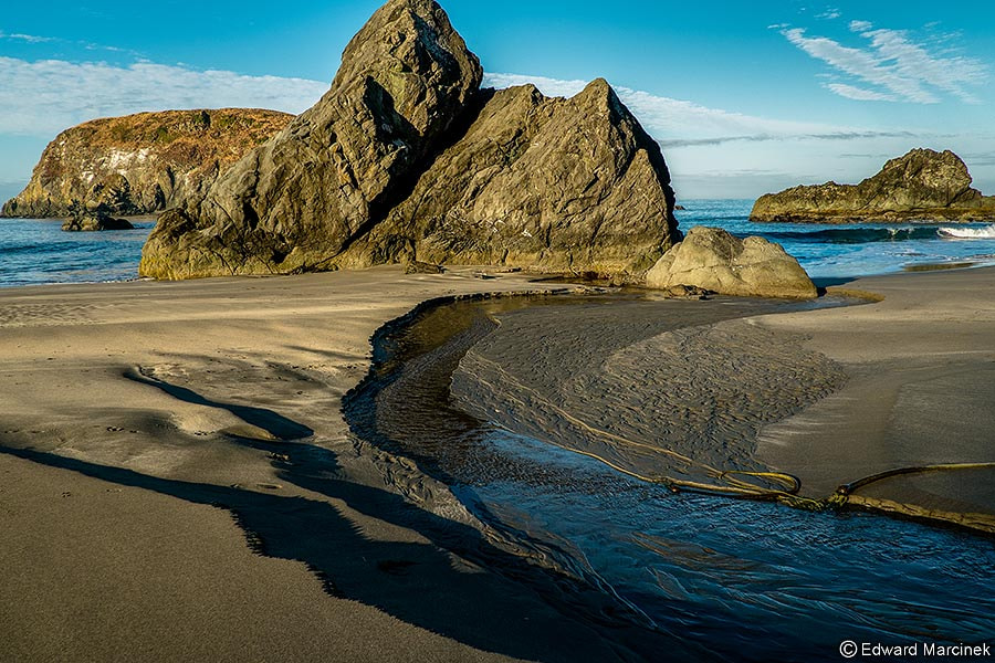 Photograph Monsters on the Beach - Oregon by Edward Marcinek on 500px