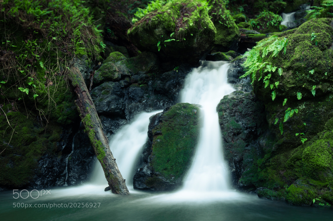 Photograph Cataract Falls by Alex Bain on 500px