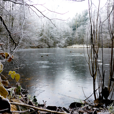 Pond winter edited, Panasonic DMC-FT5