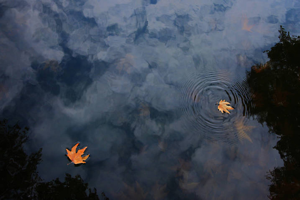 Photograph `Ripple in the sky by Jayesh Joshi on 500px