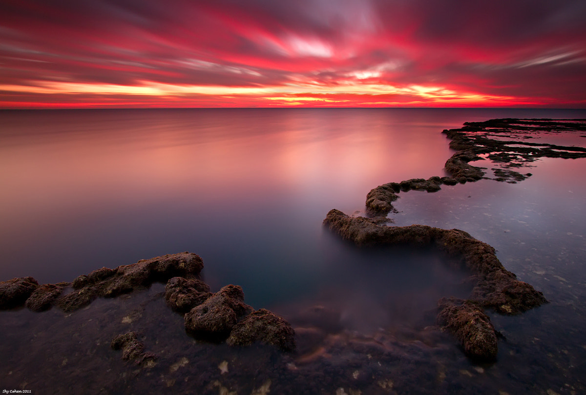 Photograph 262 seconds... by newzealand1 on 500px