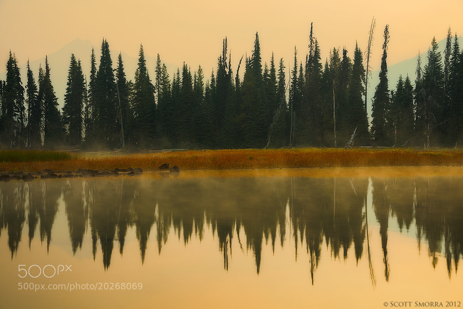 Photograph Still Morning by Scott  Smorra on 500px