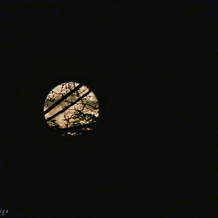 Full moon, Sony DSC-HX90, Sony 24-720mm F3.5-6.4