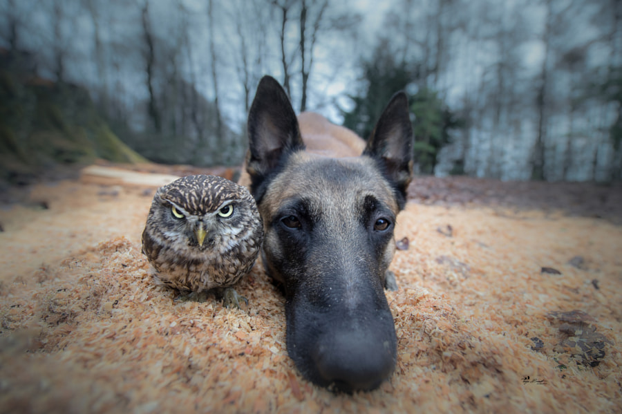 Monday by Tanja Brandt on 500px.com