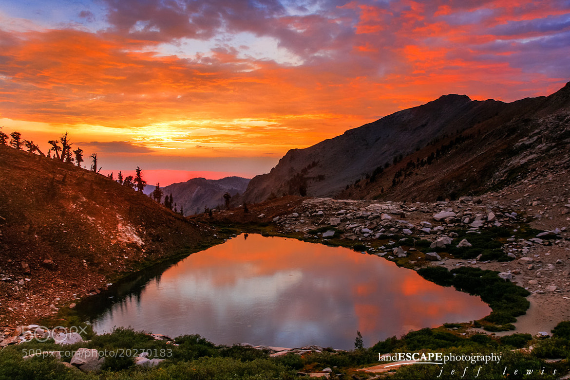 Photograph Blaze of Glory by Jeff Lewis on 500px