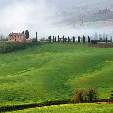 Green fields of Tuscany, Pentax K-30, smc PENTAX-FA 28-105mm F3.2-4.5 AL[IF]