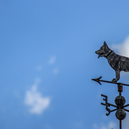 Dog Weathervane, Canon EOS REBEL T3, Sigma 50-200mm f/4-5.6 DC OS HSM + 1.4x