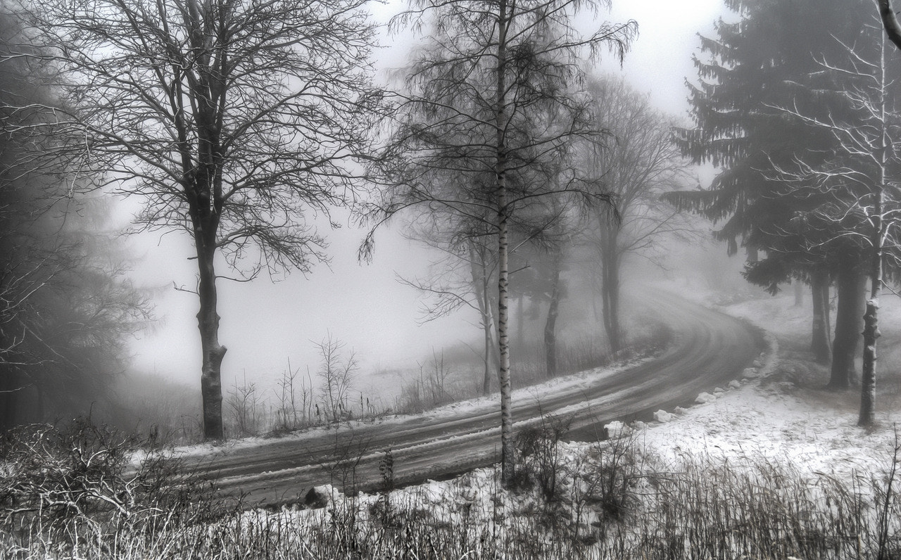 Photograph the road by Yanko Iler. Peyankov on 500px