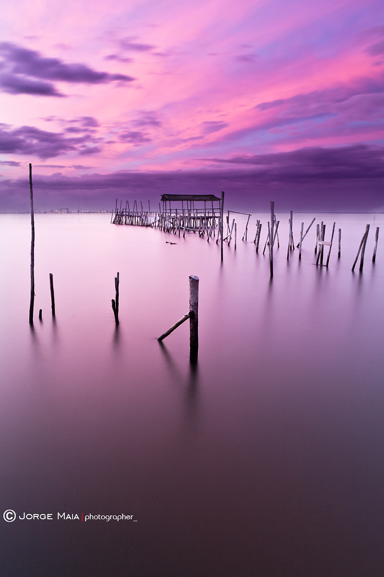 Photograph Abandoned by Jorge Maia on 500px