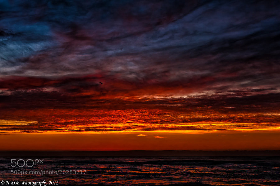 Photograph Red Dawn by Harold Begun on 500px