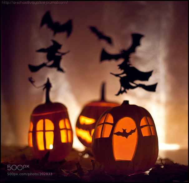 Photograph Halloween by Alexandra Schastlivaya on 500px
