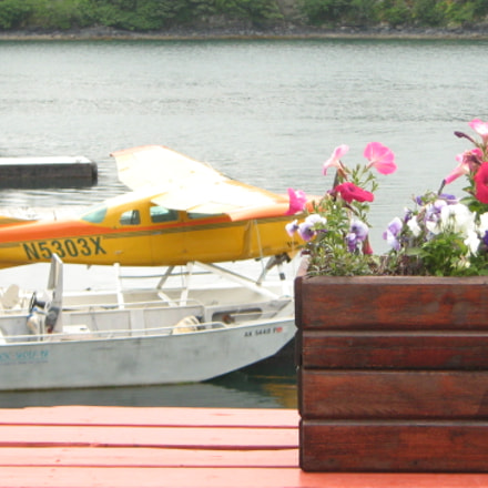 Flowers, aeroplane and Boat, Canon POWERSHOT A460